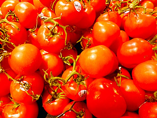 Tomatoes | by EmperorNorton47