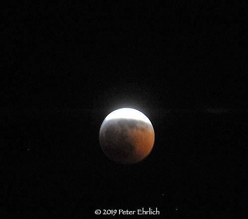 brewsterny lunareclipse bloodwolfeclipse