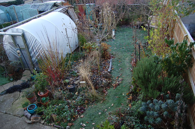 Looking Down on the Back Garden - November 2018