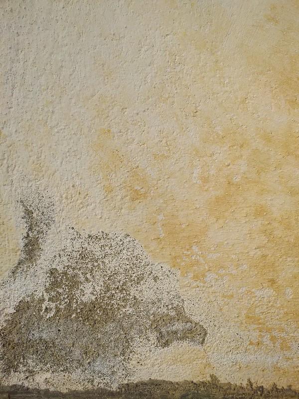 Orange Wall Texture #11