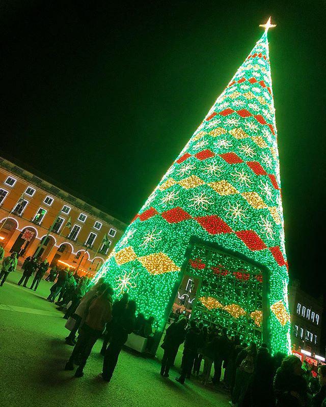 Christmas In Portugal.The Christmas Tree Portugal Lisboa Pracadocomercio