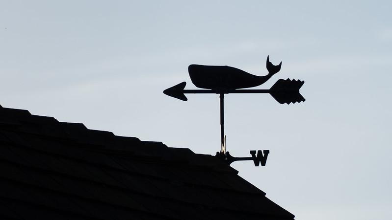 Weathervane: whale