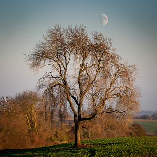 Moon Rise at Sunset | by Paul Kaye