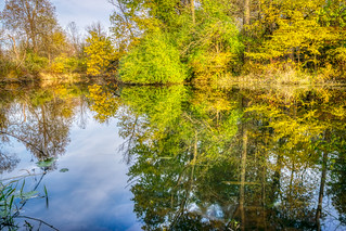 River Reflections | by tquist24