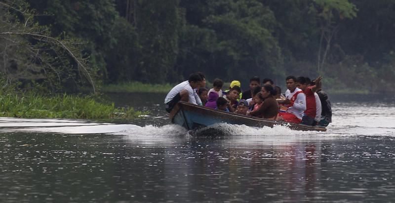 Peruvian Amazon_Ascanio 199A6648