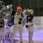 Weihnachtszauber: Schaulaufen Saison 2018/2019