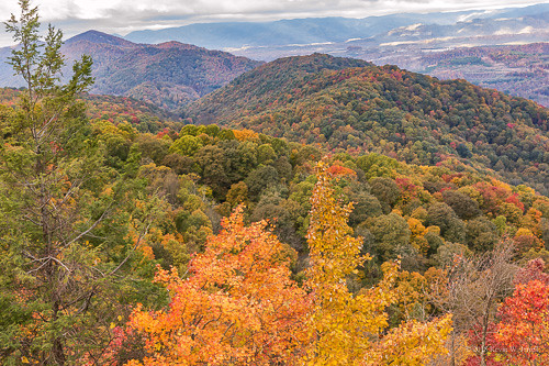 autumncolors autumn autumnbeauty nikond7200 sigmalens backroadphotography mountains fall fallcolor