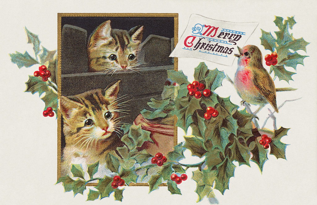 Cats Christmas card design