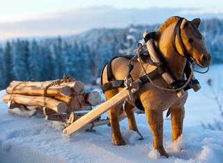 Horselogging   by estenvik