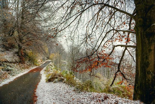 verso l'inverno ... #1