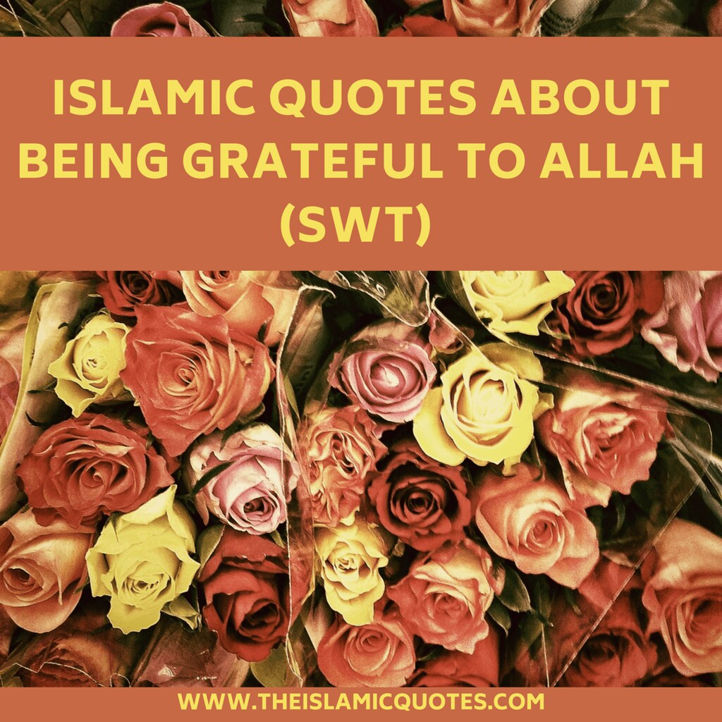 gratitude quotes islamic quotes about being grateful flickr