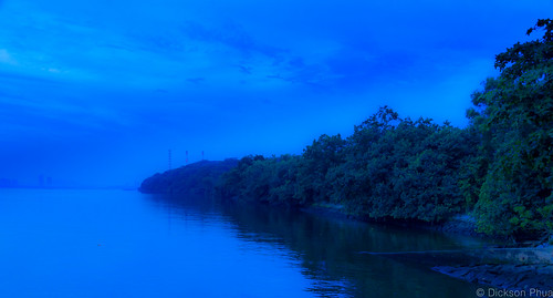 park nightphotography blue sky tree nature water misty night landscape photography woodlands singapore waterfront outdoor tripod relaxing foggy surreal hour coastline sg