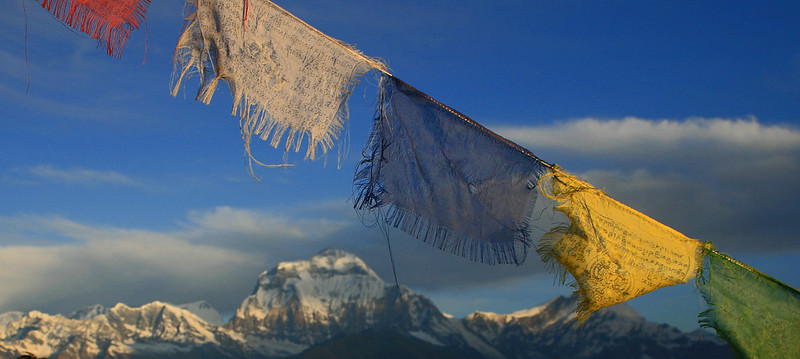 Day 3: Prayer flags in front of Dhaulagiri