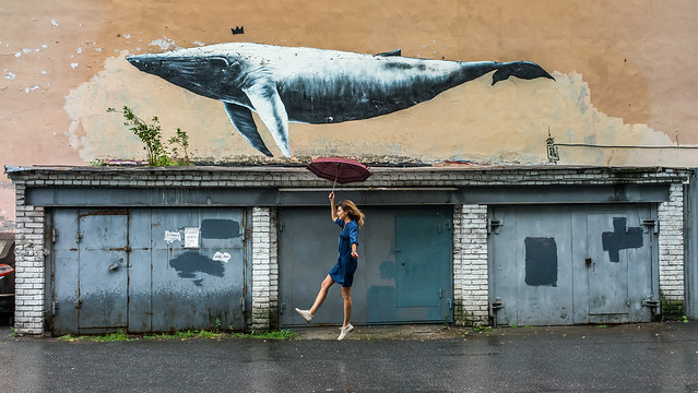 St Pete Whale