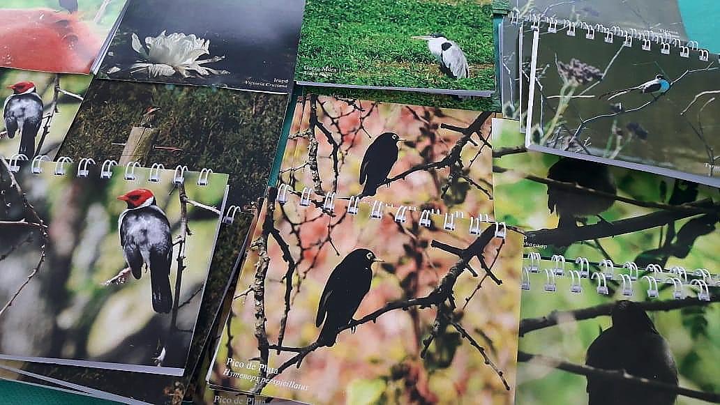Libretas y postales a la venta Todas hechas con fotos del grupo de Avistaje de Aves  junto a la profe Juli Gastaudo