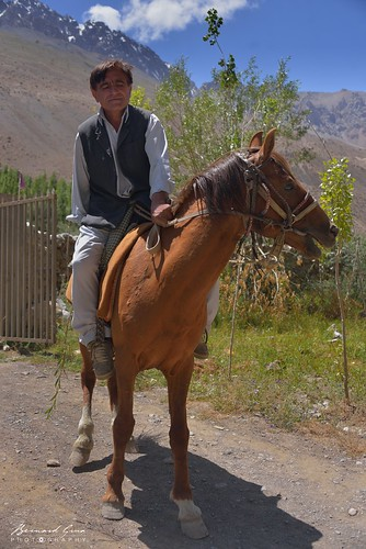 Wakhi: Zood Khun,a local gentleman on a horse visiting Alam Jan © Bernard Grua
