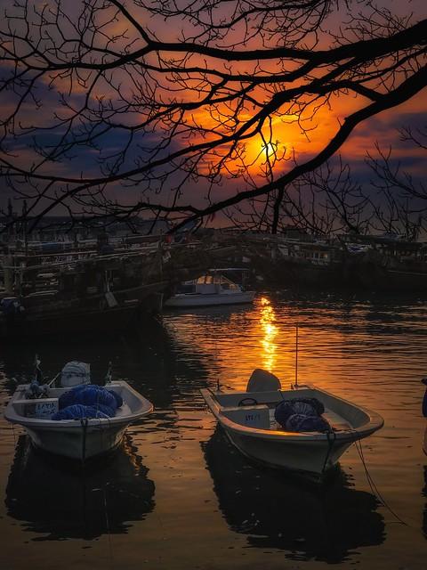 Good night all my friend ☺️😊👋