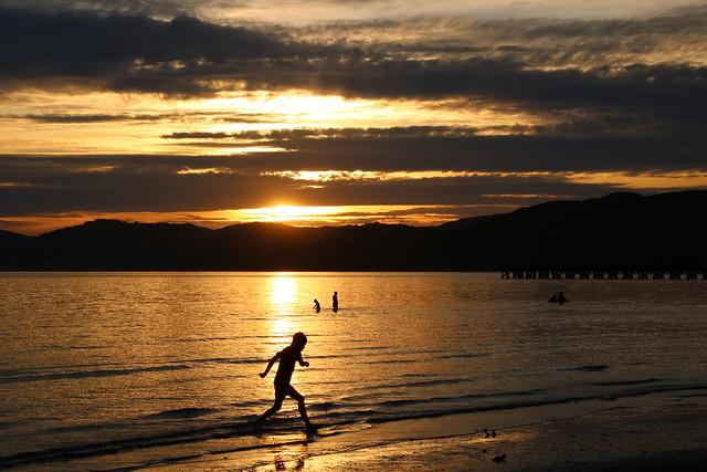 Sundown on Wellington harbour