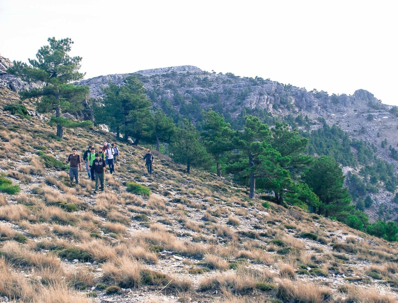 El grupo buscando los mejores pasos