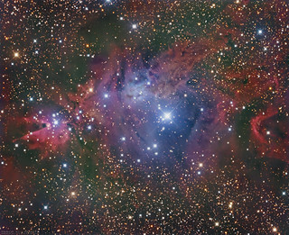 NGC 2264 the Christmas Tree Cluster | by www.swiftsastro.com