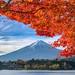 Fuji and Autumn leaves by shinichiro*