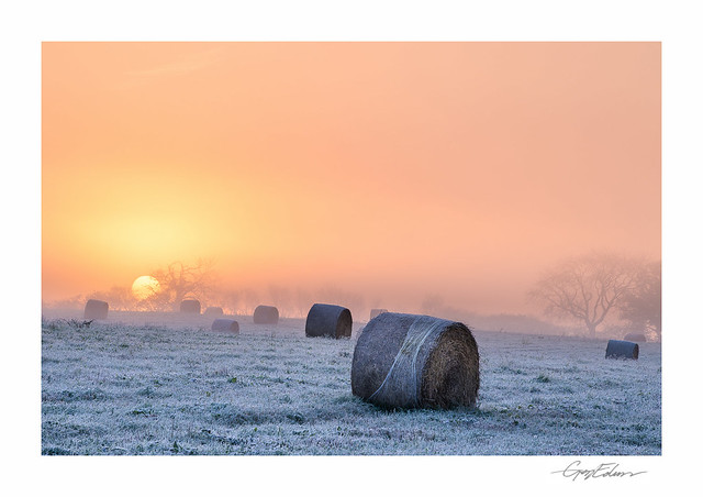Frosted Bales III
