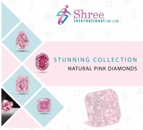 Shree International (HK) Ltd