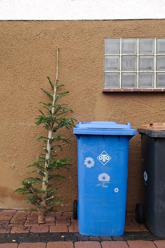 Weihnachten ist vorbei | by noluck