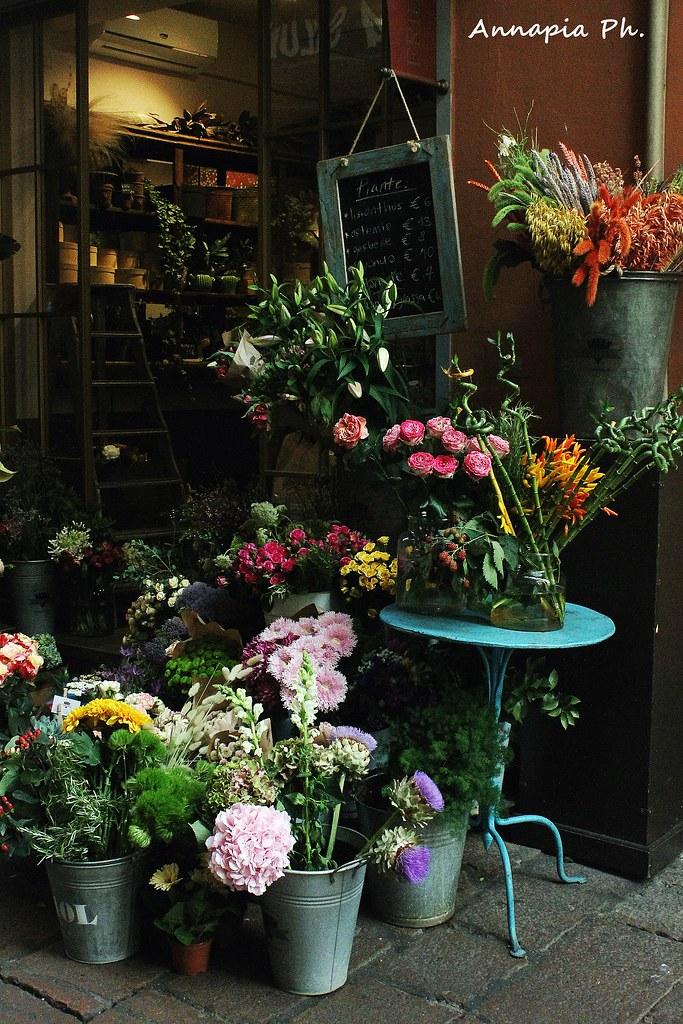 Flowers around the city