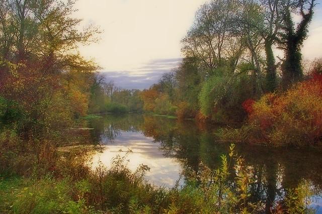 Les marécages du Grand Ried en automne au crépuscule