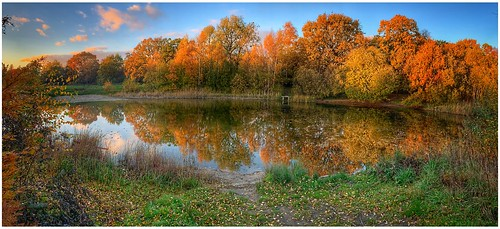 iphoneography iphone autumn autumnal beauty colour colourful sunlight sunlit trees foilage bushes pond silicapond water reflections golden scenic outdoors outside weather weatherwatch sky skywatching cloud nature naturephotography scunthorpe lincolnshire northlincs northlincolnshire nlincs scenenic