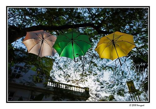 harrypwt nigeria maitama abuja africa afrika umbrellas colorful fujix70 x70 fujifilm city borders framed