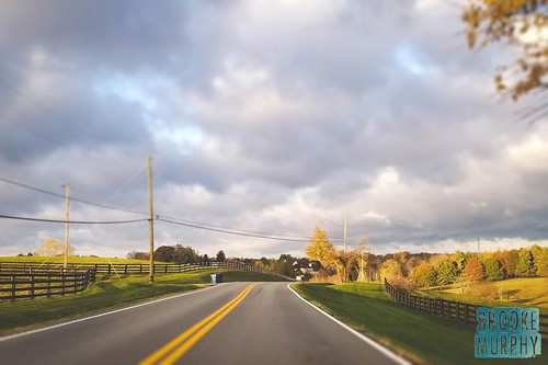 fall autumn seasons kentucky hills trees road country america day daylight outside tree sky clouds nature blue green yellow leaves light landscape landscapes home november