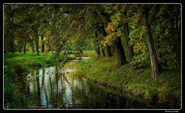 Neratovice - Mlékojedy_Podzim v Polabí_Autumn around Elbe_Czechia