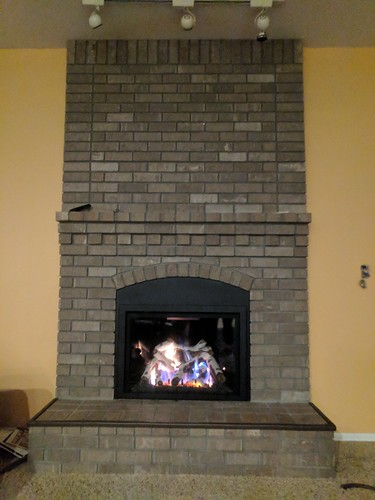 Kozy Heat Roosevelt 34 with White Birch logs and black glass refractory panels. | by Thompson's Hearth & Home