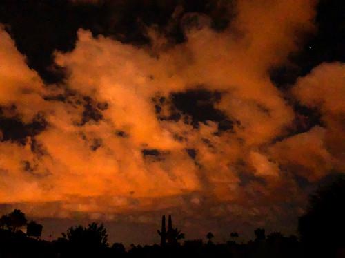 cactus cacti sunset monsoon clouds silhouette enmasse arizona vistancia sun summer 2007 color colors orange cloudy humid landscape