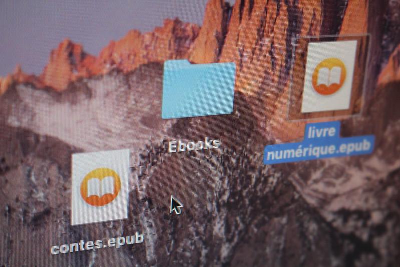Fichiers livre numerique ebooks epub
