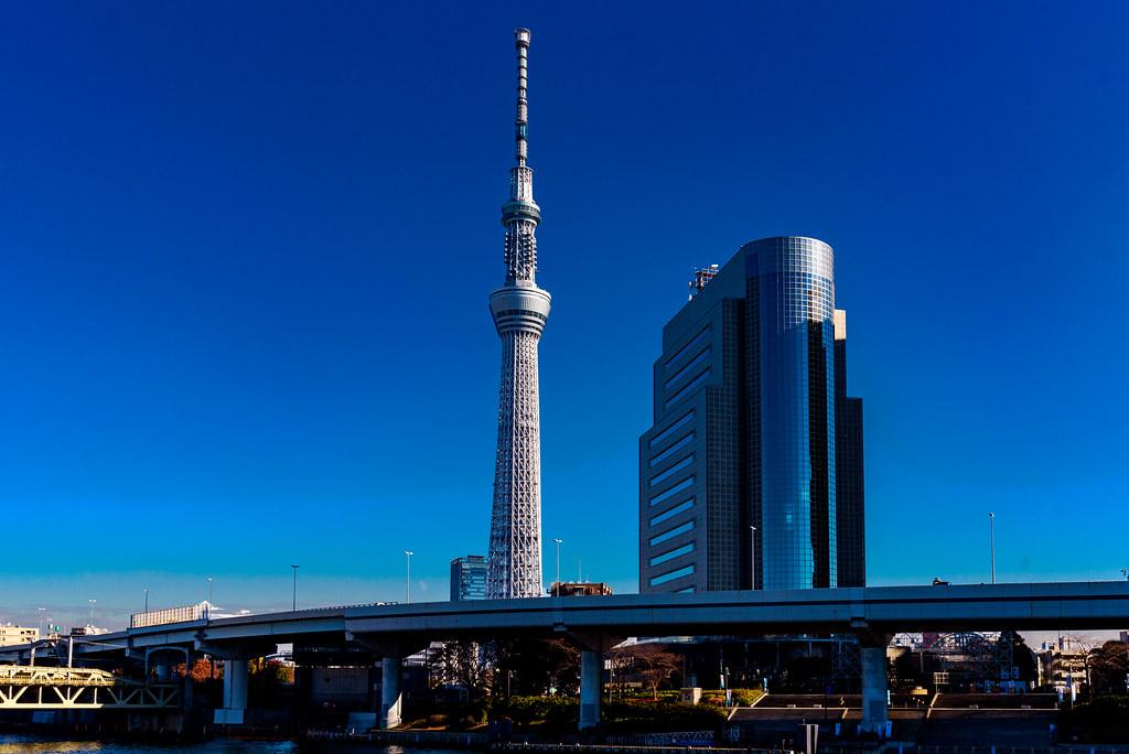 View of Tokyo Sky Tree from Sumida Park : 隅田公園にて東京スカイツリー展望