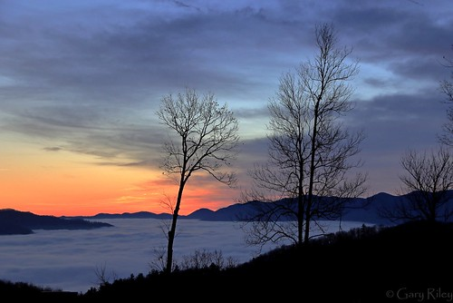 blueridgeparkway blueridge mountain sunrise dawn fog foggy northcarolina ncarolina predawn valley beautiful gorgeous