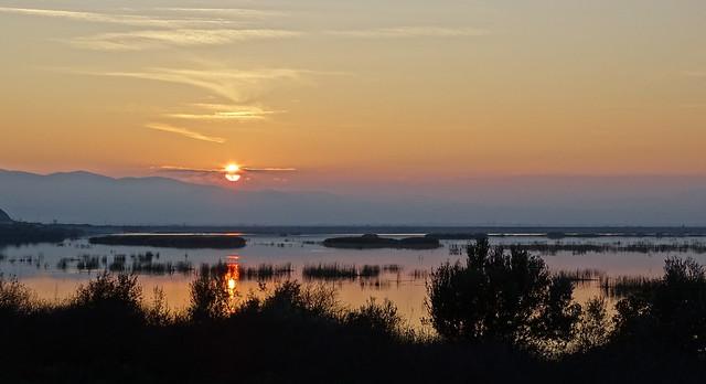 DSC07178...δείλι στήν λίμνη Βοιβηΐδα!