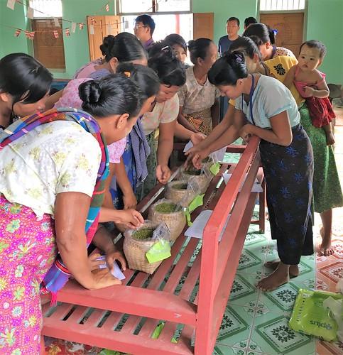 myanmar gender women seeds