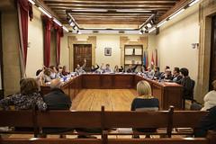 Momento de la votación de las Ordenanzas de 2019.