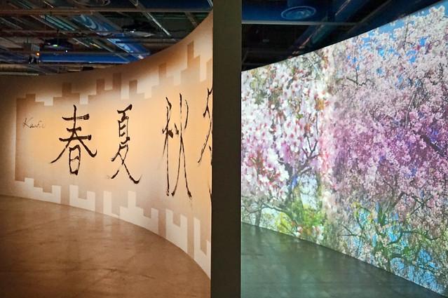 Installation de Naomi Kawase au centre Pompidou, Paris