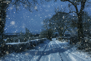 snow lane | by Goresbridge_Gardener