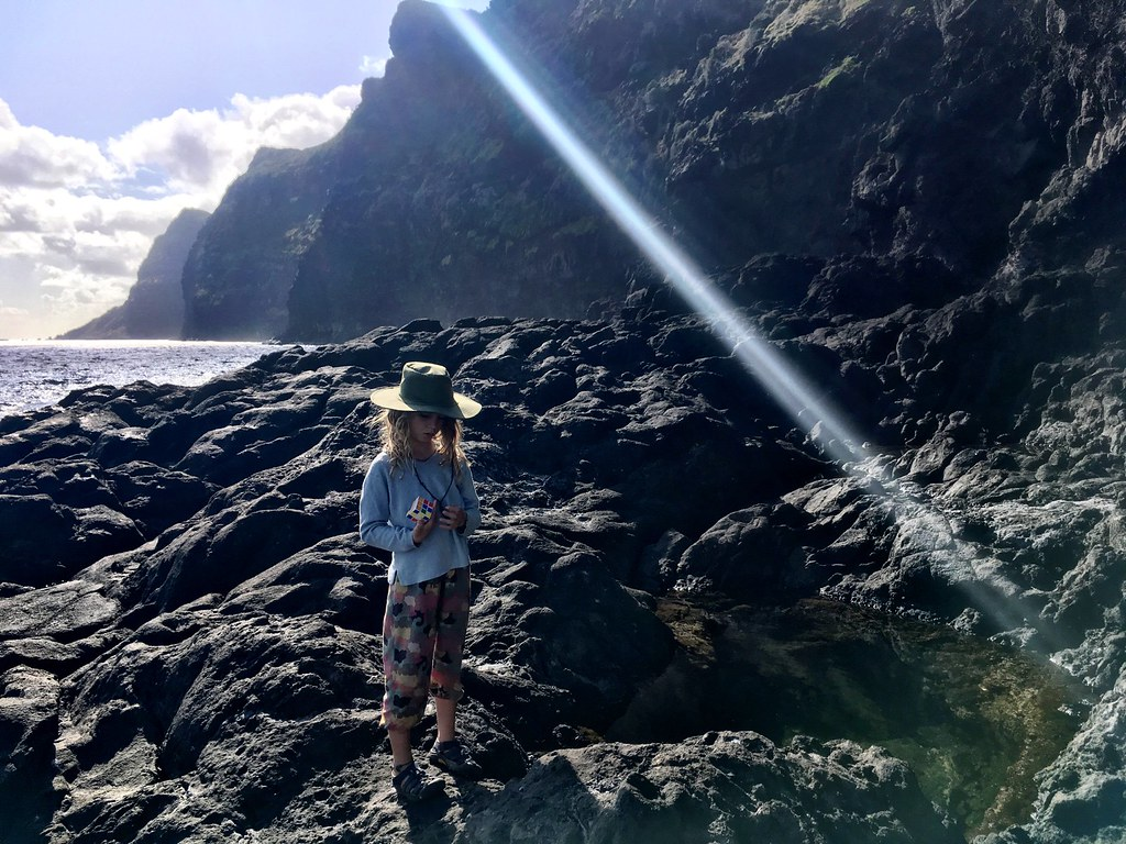 Lord Howe Island : Herring Pools