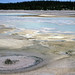 NHSPNN127 (One Hundred Spring Plain, Norris Geyser Basin, Yellowstone Hotspot Volcano, nw Wyoming, USA)