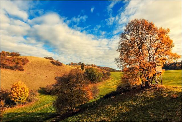 Herbst mit sanften Rundungen