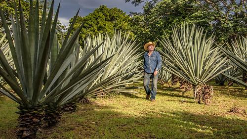 Mexiko, Yucatan, Chichén-Itzá. Die Fotografin und der schwarze Leguan