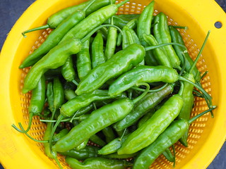 Piment Curry (C.baccatum)   by Galina Chernova