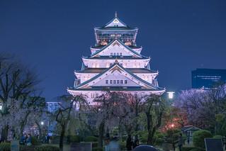 Osaka Castle Sakura | by inefekt69